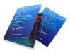 Sea Shell Dive Cove Folder